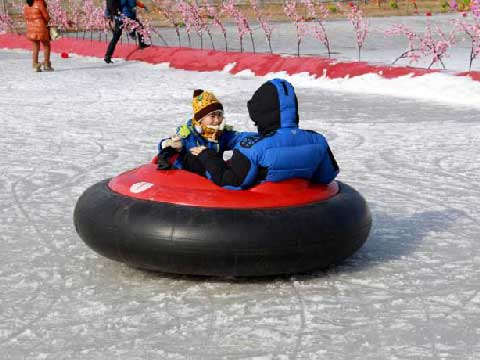 Ice Bumper Cars for Amusement Park in Beston